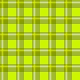 Зеленая checkered ткань Стоковое Изображение