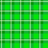 Зеленая checkered ткань Стоковые Изображения RF