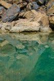 Зеленое болото и отражение камней Стоковые Изображения