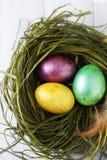 Зеленое гнездо с покрашенными яичками Стоковое Фото