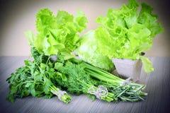 Зеленое здоровое Backgound Стоковые Фото