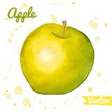 Зеленое и желтое абстрактное яблоко акварели Стоковое Изображение RF