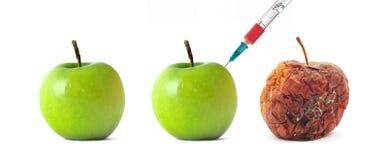 Зеленое и тухлое яблоко Стоковое Изображение