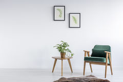 Зеленое кресло в комнате стоковые изображения rf
