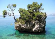 зеленое море острова Стоковое Изображение RF