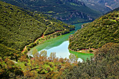 Зеленое озеро на горах Стоковое Изображение RF