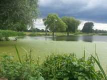 зеленое озеро Стоковое Изображение