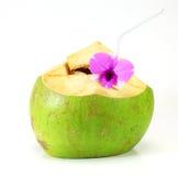 Зеленое питье воды кокоса Стоковое Изображение RF