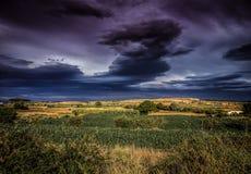 Зеленое поле в tarazona Испании Стоковые Фотографии RF