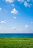 Зеленое поле против моря и неба Стоковая Фотография