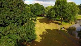 Зеленое поле с лошадями и водой сток-видео