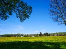 Зеленое поле с ясным голубым небом в Германии - Австрии Стоковая Фотография