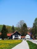 Зеленое поле с ясным голубым небом в Германии - Австрии Стоковое Фото
