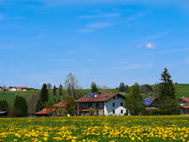 Зеленое поле с ясным голубым небом в Германии - Австрии Стоковое Изображение RF