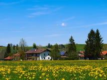 Зеленое поле с ясным голубым небом в Германии - Австрии Стоковые Изображения
