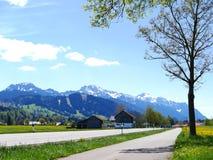 Зеленое поле с ясным голубым небом в Германии - Австрии Стоковая Фотография RF