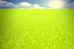 Зеленое поле 3D стоковое изображение rf