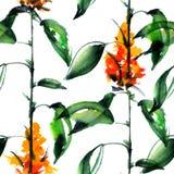 Зеленое растение с цветками Стоковые Изображения
