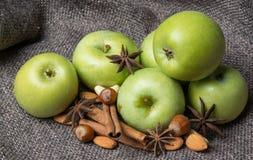 Зеленое свежее яблоко Стоковые Изображения RF