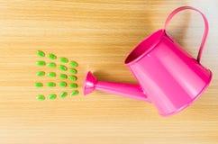 Зеленое семя с чонсервной банкой розового сада моча Стоковое Изображение RF