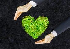 зеленое сердце Стоковые Изображения RF