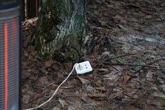 Зеленое электричество Стоковое фото RF