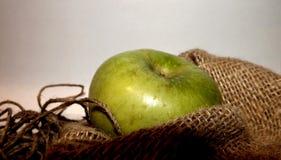 Зеленое яблоко на увольнении Стоковая Фотография