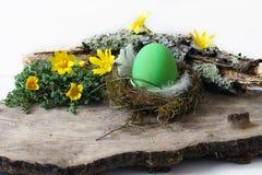 Зеленое яичко в гнезде и желтых цветках Стоковые Фотографии RF