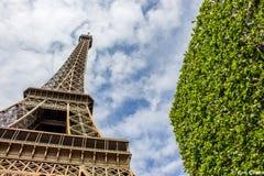Зеленое Eifel Стоковая Фотография