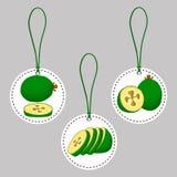 Зеленое feijoa плодоовощ Стоковое Фото