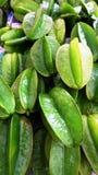 Зеленое starfruit Стоковое Изображение RF