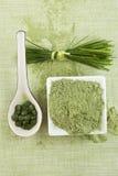 Зеленое superfood. Стоковая Фотография