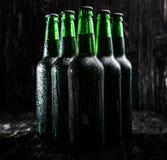 Зеленые бутылки пива Стоковые Изображения