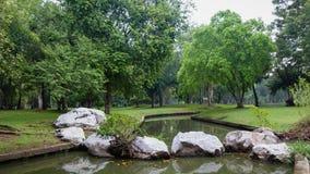 зеленые валы Стоковая Фотография RF