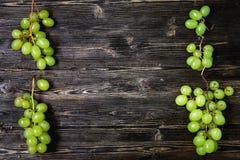 Зеленые виноградины Стоковые Изображения RF