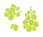 Зеленые виноградины иллюстрация штока