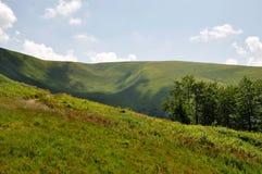 зеленые горы лужка Стоковые Фотографии RF