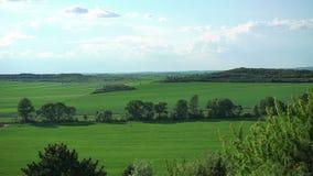 Зеленые горы, утесы, ландшафт полей сток-видео