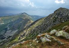 зеленые горы Стоковые Изображения RF