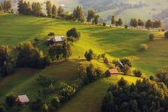 зеленые горы стоковое изображение rf
