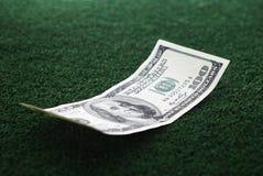 Зеленые деньги Стоковое фото RF