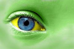 Зеленые желтый цвет и голубой глаз Стоковые Фотографии RF