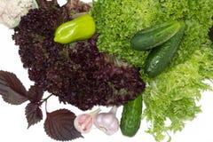 зеленые здоровые овощи Стоковые Фото