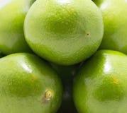 зеленые лимоны группы Стоковые Фотографии RF