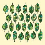 Зеленые листья вектора Стоковые Изображения RF