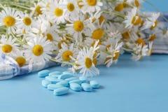 Зеленые лист, альтернативное лекарство Стоковое Фото