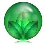 Зеленые лист в зеленой сфере Иллюстрация вектора