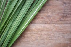 Зеленые лист дерева сахара на деревянной предпосылке Стоковая Фотография