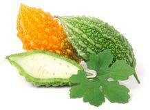 Зеленые и желтые горькие дыня или momordica изолированные на белой предпосылке Стоковые Изображения RF