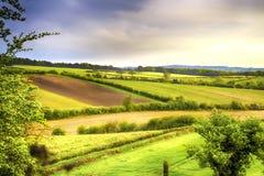 Зеленые и желтые поля в предыдущей весне стоковые фото